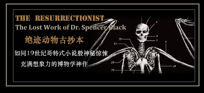 【中商原版】绝迹动物古抄本 英文原版 the resurrectionist 复活师