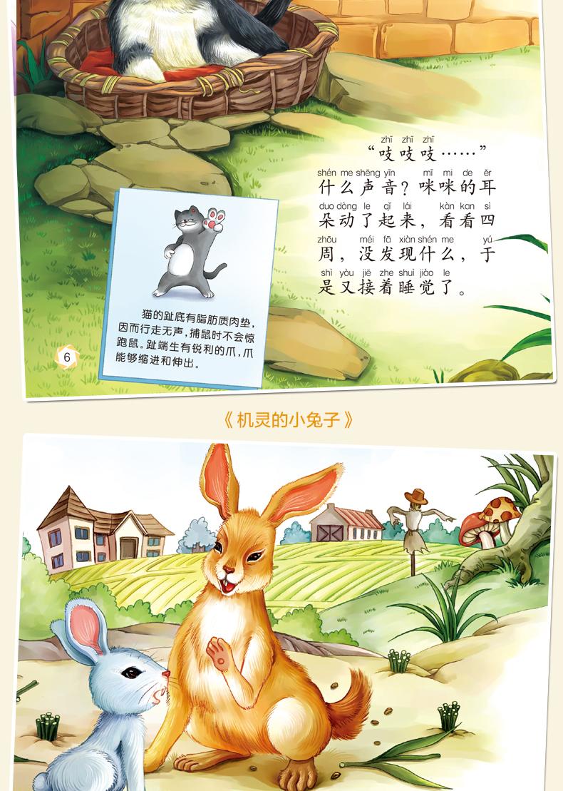 小动物成长故事绘本全10册 3-4-5-6岁儿童书籍宝宝夜晚睡前故事书彩图
