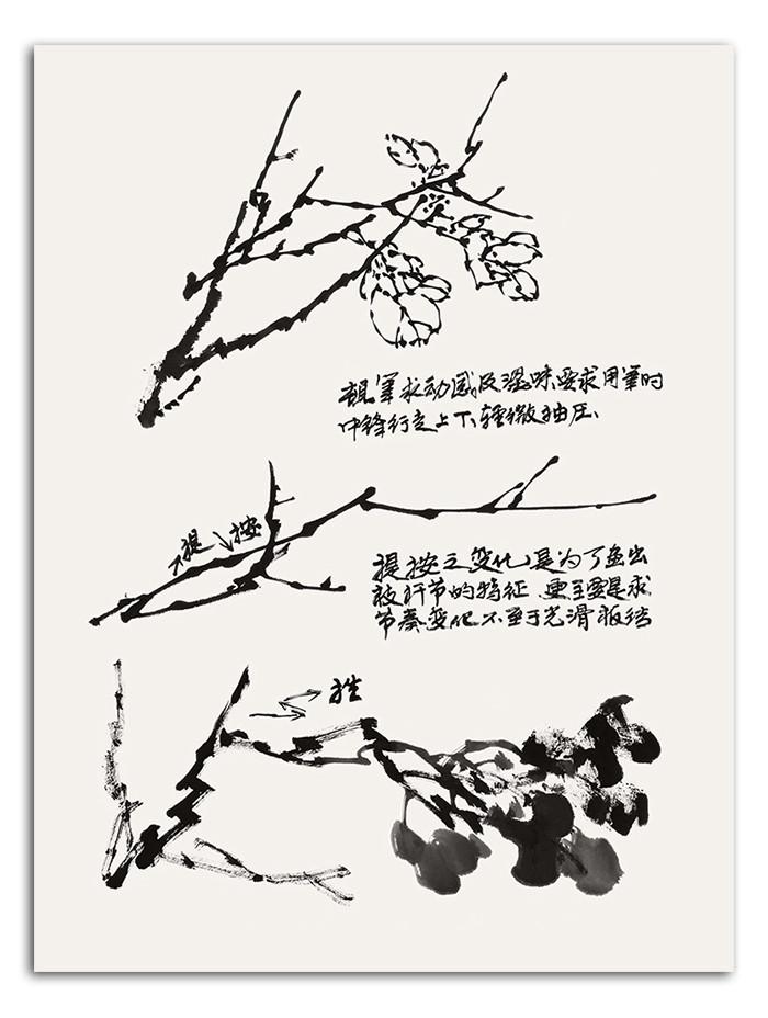 为中国写意花鸟画基础技法丛书,此次出版从中国画*常见的荷花,竹子